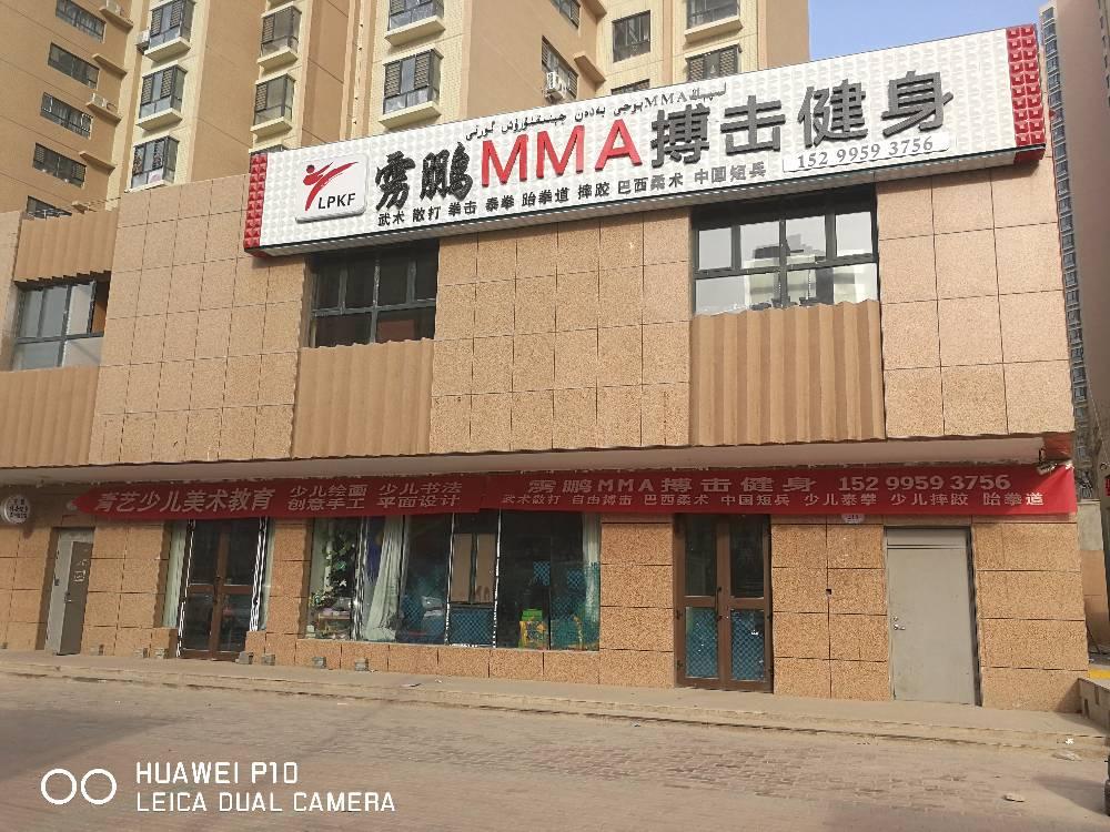 雳鹏MMA搏击健身